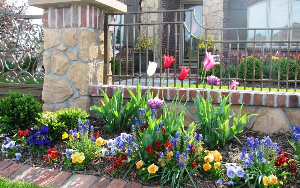 Landscape beds in spring bloom.