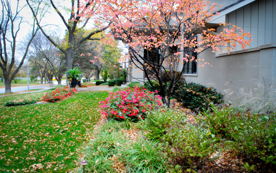 Fall Landscape Tips And Checklist Breaking Ground