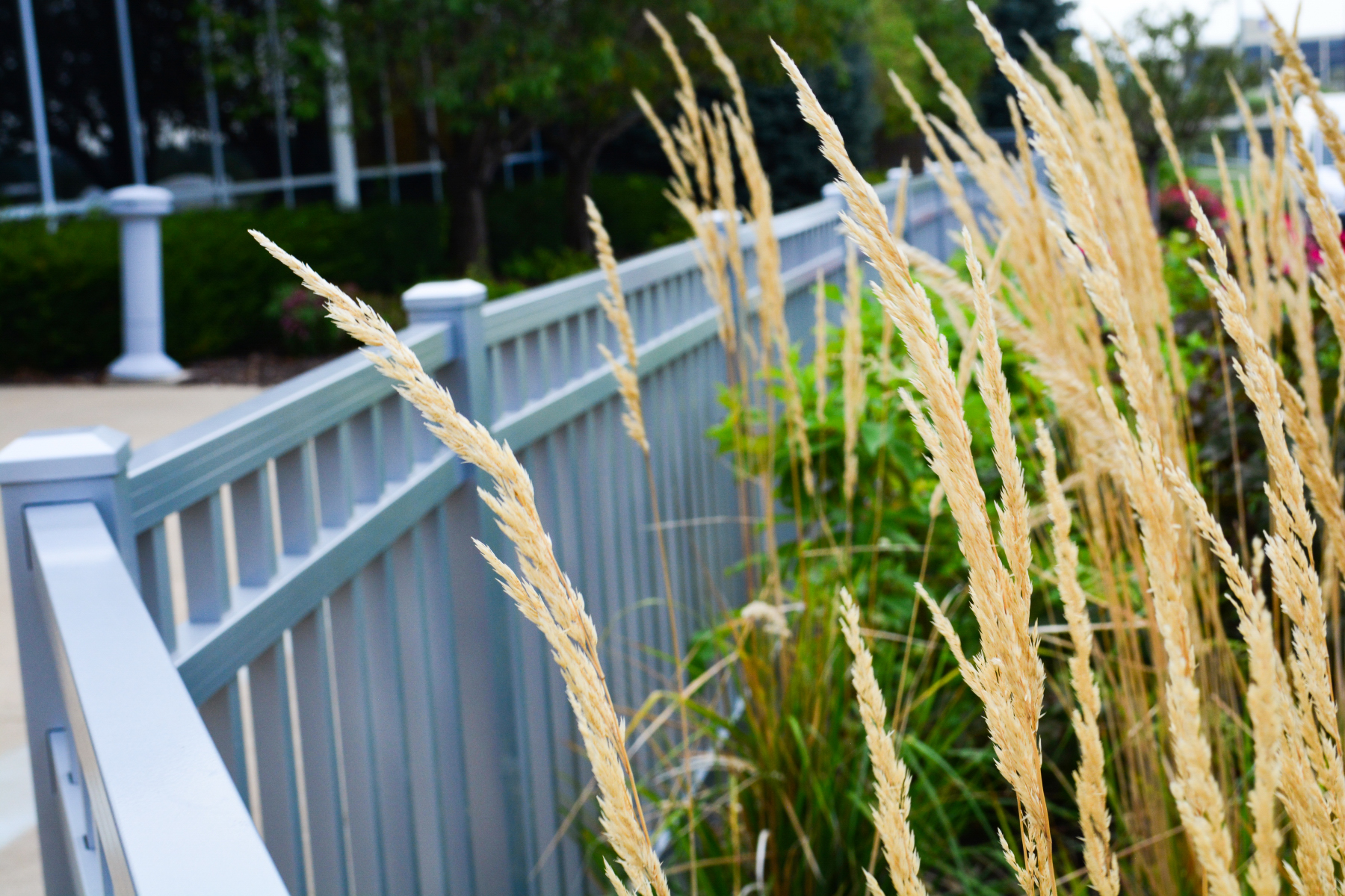 Feather-reed-texture-on-Fence