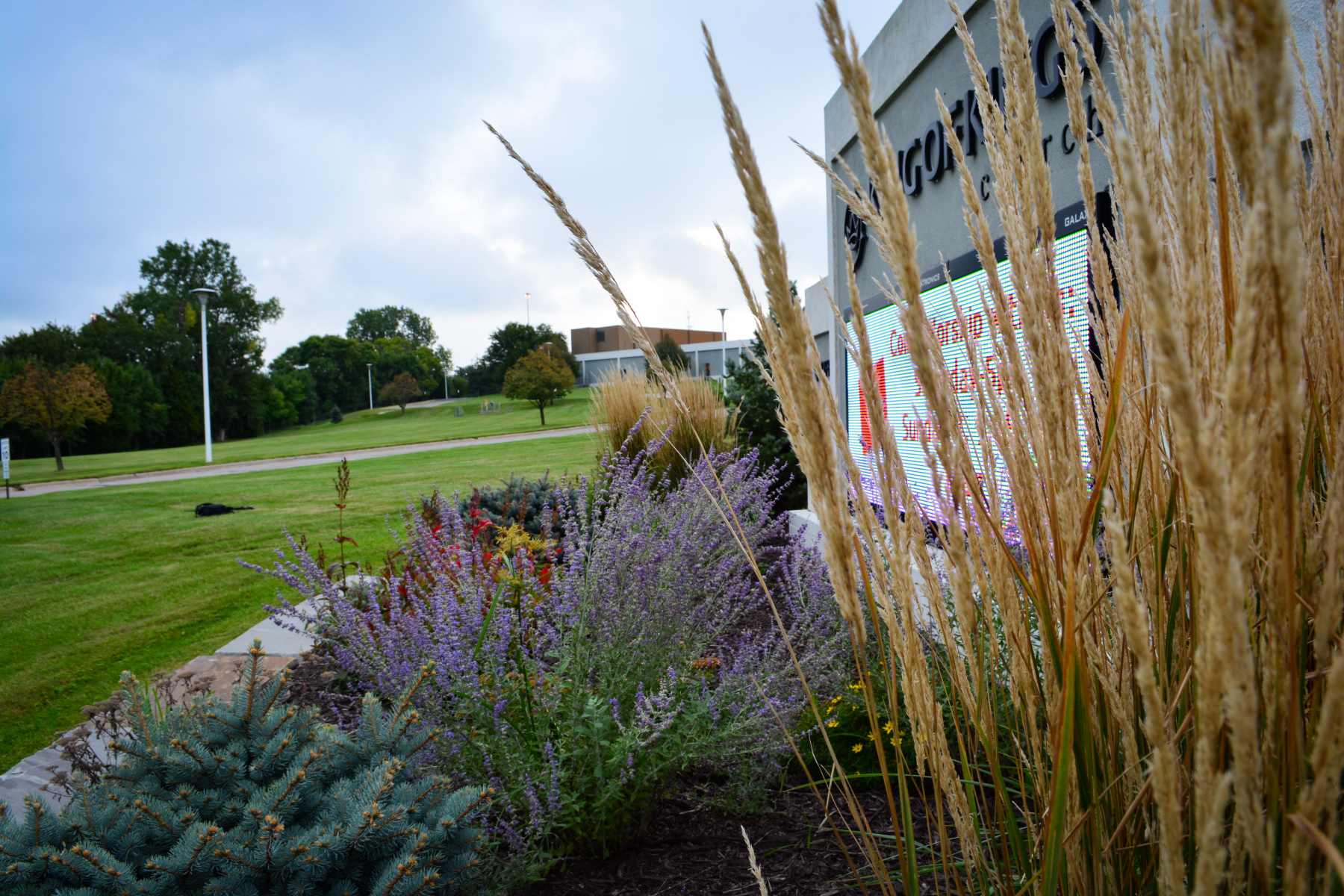 Front-sign-plantings