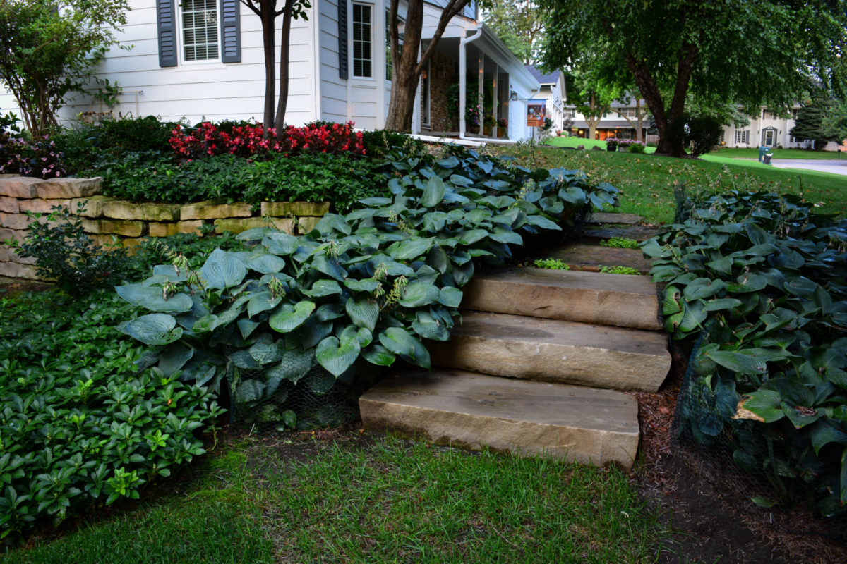 Front-stairs-e1484685839610