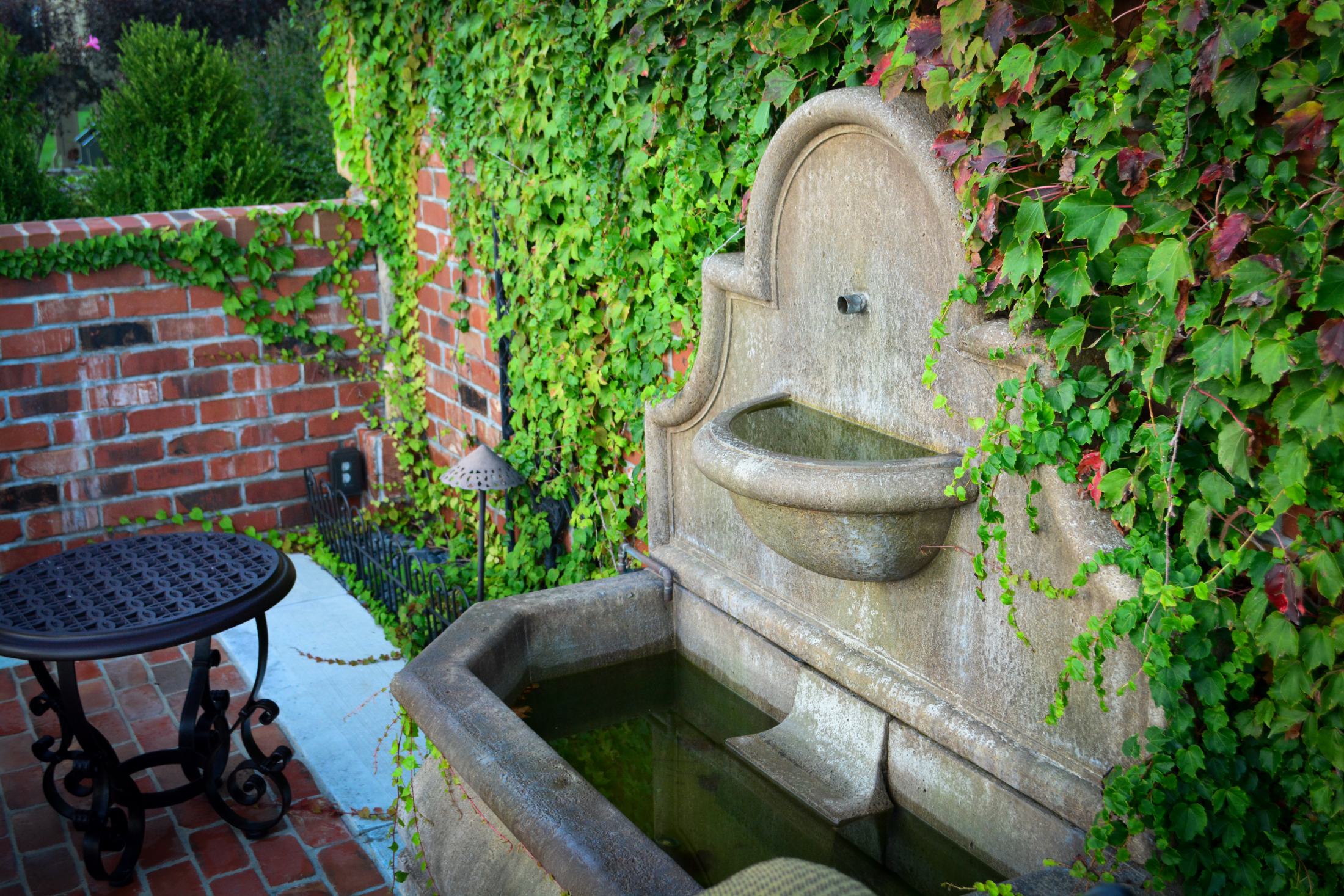 Ivy-Water-Feature