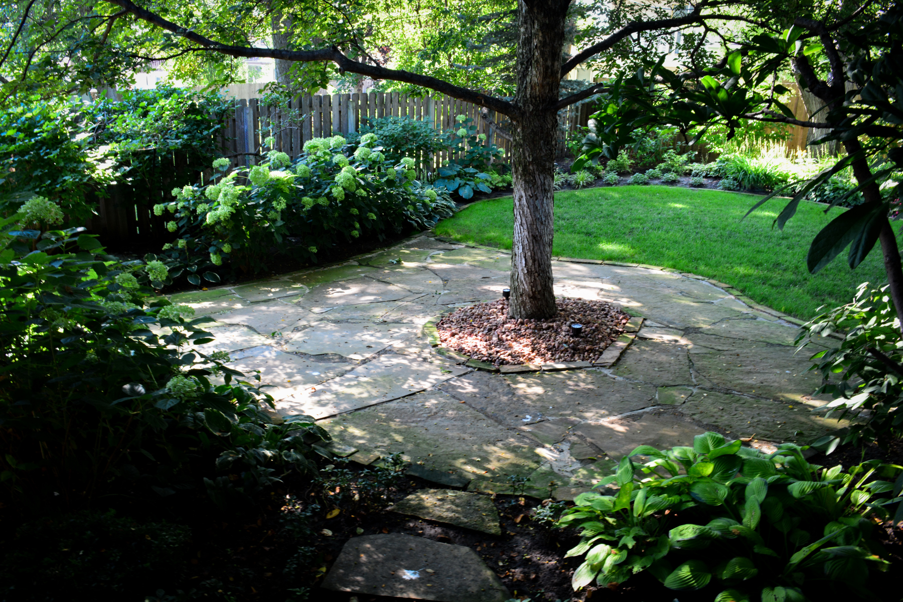 tree-patio-2